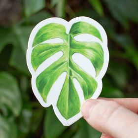 Rhaphidophora Tetrasperma Sticker